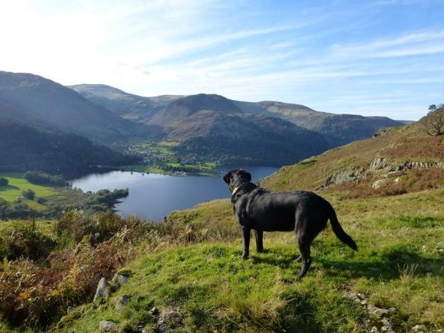 Morgan above Ullswater